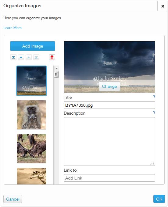 ממשק ניהול התמונות ב Wix