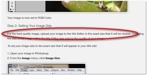ב Wix ממליצים להעלות תמונות מראש בגודל מתאים