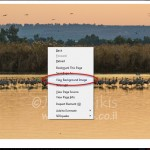 קל לגנוב תמונות ב Wix - Firefox