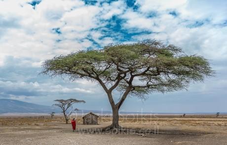 טיול צילום לטנזניה